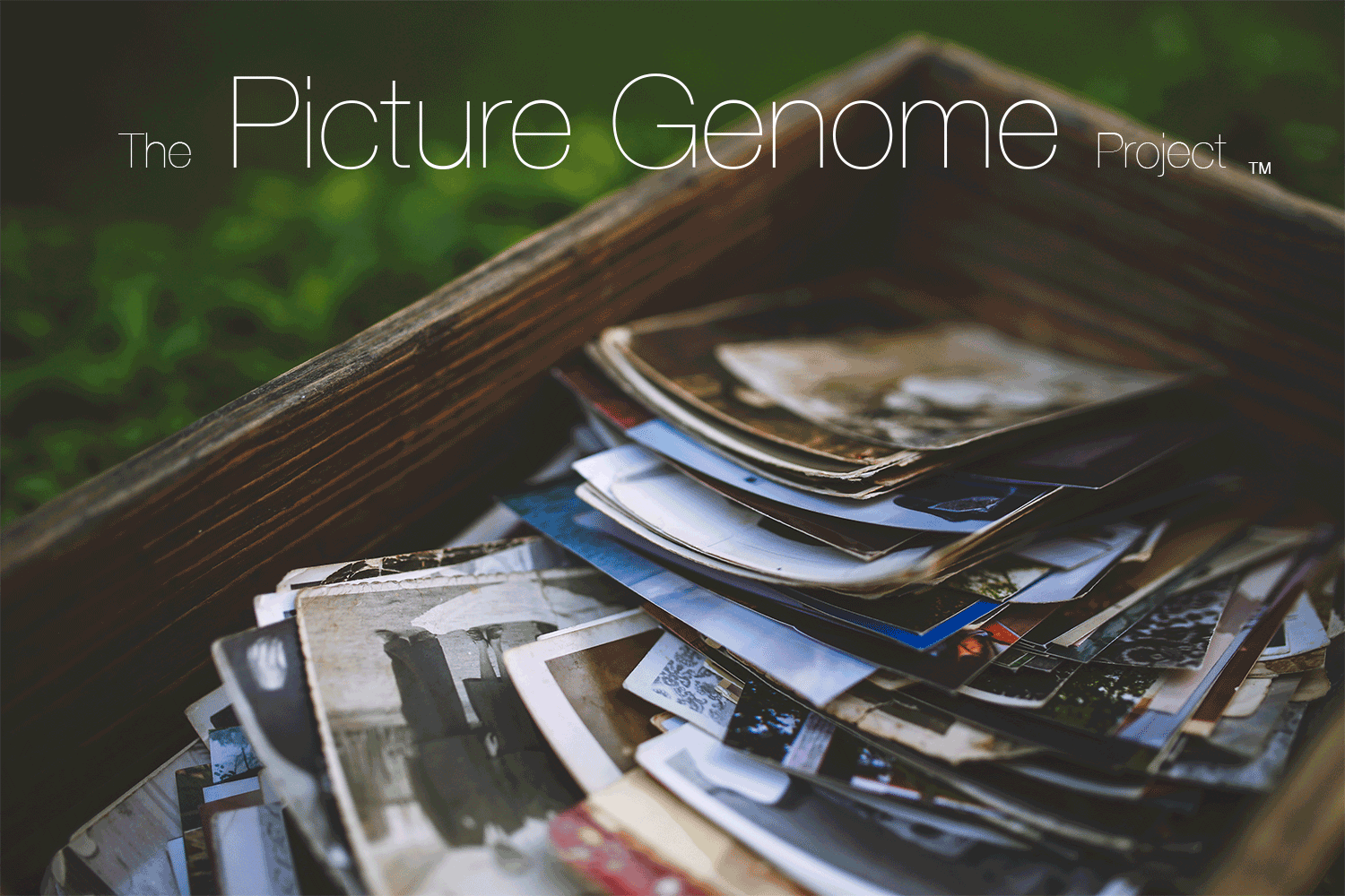 The Picture Genome Project