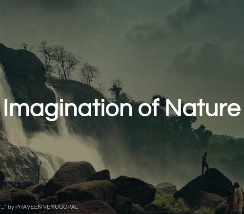 Imagination of Nature