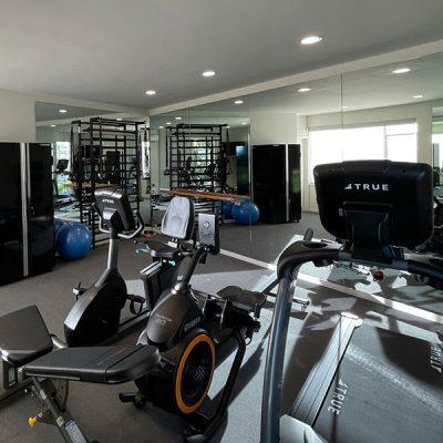 Home Gym Buildouts